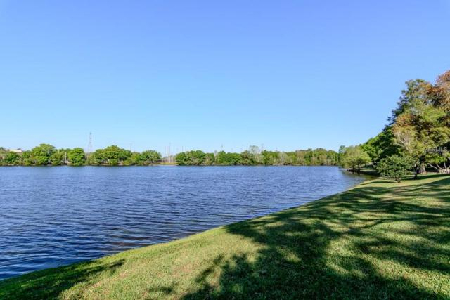 2806 Countryside Boulevard #526, Clearwater, FL 33761 (MLS #U7852744) :: Burwell Real Estate