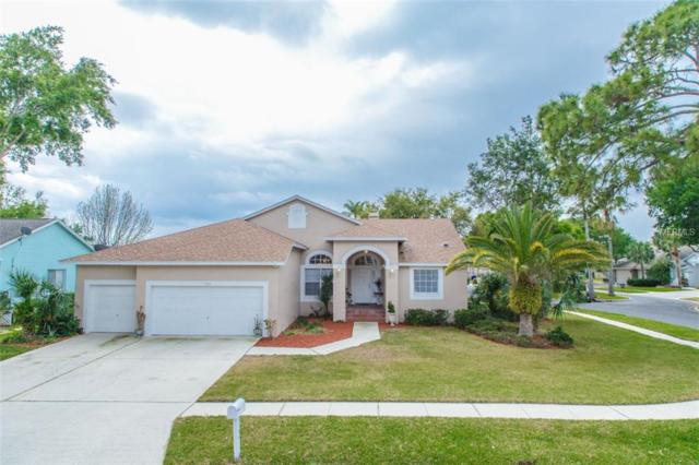3184 Shoreline Drive, Clearwater, FL 33760 (MLS #U7852805) :: Chenault Group