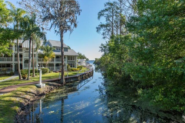 2533 Dolly Bay Drive #306, Palm Harbor, FL 34684 (MLS #U7852944) :: The Duncan Duo Team