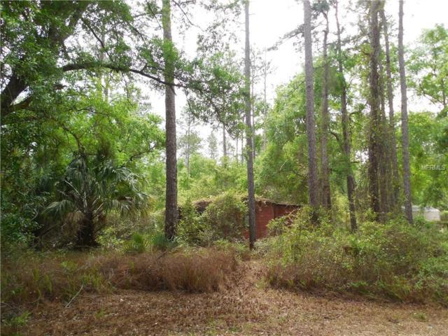 0 Ne 142Nd Lane, Fort Mc Coy, FL 32134 (MLS #U7853765) :: Bustamante Real Estate