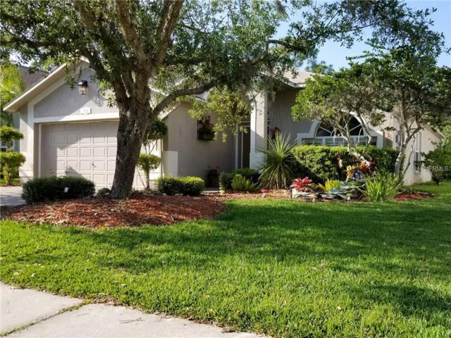 Address Not Published, Odessa, FL 33556 (MLS #U7853847) :: The Duncan Duo Team