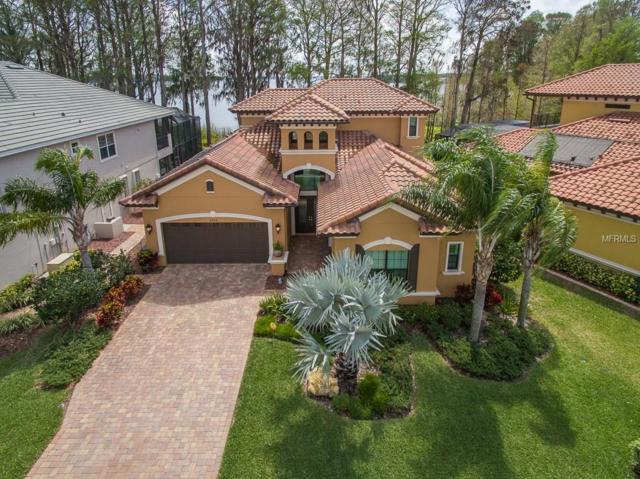 4539 Grand Lakeside Drive, Palm Harbor, FL 34684 (MLS #U7853963) :: The Duncan Duo Team