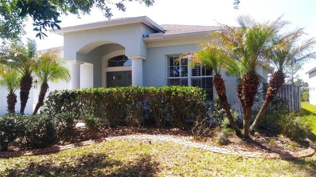 3443 Juneberry Drive, Wesley Chapel, FL 33543 (MLS #U7854195) :: Team Bohannon Keller Williams, Tampa Properties
