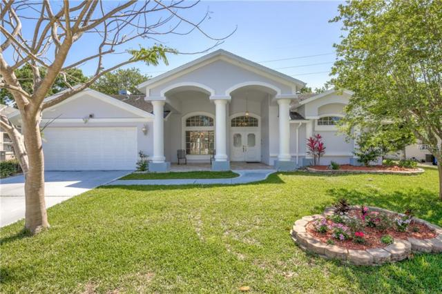 2799 Jarvis Circle, Palm Harbor, FL 34683 (MLS #U8000015) :: Chenault Group