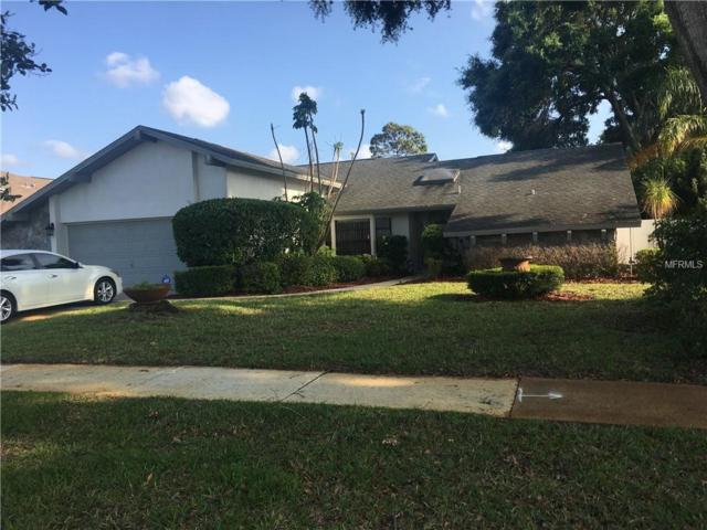 Address Not Published, Palm Harbor, FL 34685 (MLS #U8000241) :: KELLER WILLIAMS CLASSIC VI
