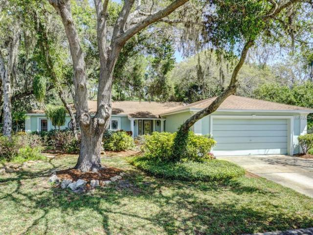 4014 Sandpiper Court, Palm Harbor, FL 34684 (MLS #U8000254) :: Delgado Home Team at Keller Williams