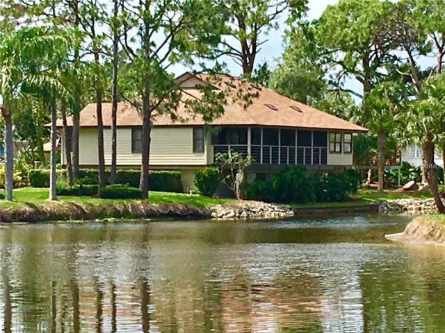 1010 Osprey Court, Tarpon Springs, FL 34689 (MLS #U8000457) :: Chenault Group