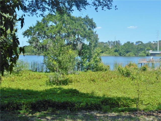 536 Spring Lake Circle, Tarpon Springs, FL 34688 (MLS #U8000665) :: Griffin Group