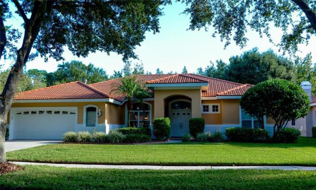 9325 Cypress Bend Drive, Tampa, FL 33647 (MLS #U8000743) :: The Lockhart Team
