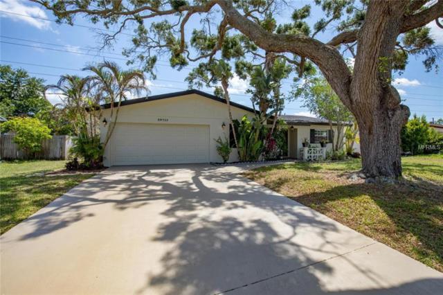 29733 69TH Street N, Clearwater, FL 33761 (MLS #U8000802) :: Griffin Group