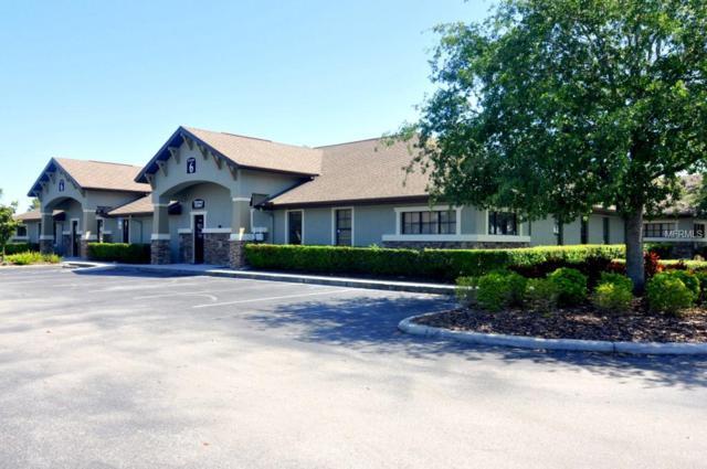1812 Health Care Drive, Trinity, FL 34655 (MLS #U8000893) :: Delgado Home Team at Keller Williams
