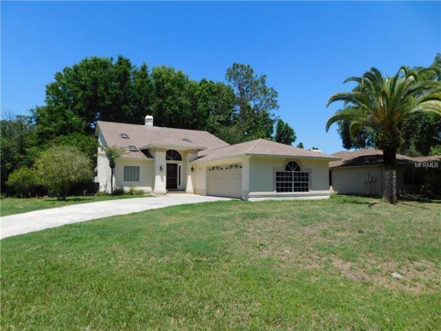 5413 Eagle Boulevard, Land O Lakes, FL 34639 (MLS #U8000936) :: Team Bohannon Keller Williams, Tampa Properties
