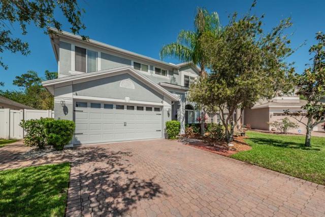402 Wingate Circle, Oldsmar, FL 34677 (MLS #U8001097) :: The Lockhart Team