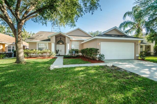 1252 Salt Lake Drive, Tarpon Springs, FL 34689 (MLS #U8001114) :: Revolution Real Estate