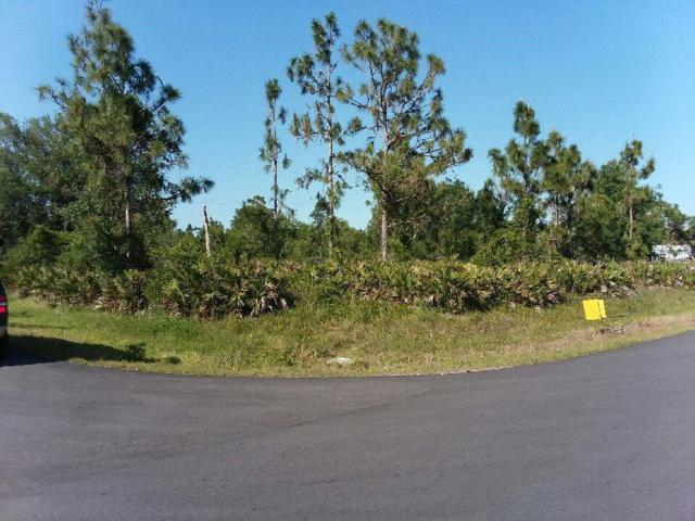 29404 Lillis Street, Punta Gorda, FL 33982 (MLS #U8001227) :: G World Properties
