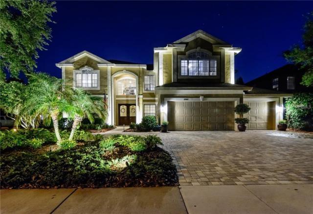 4160 Moreno Drive, Palm Harbor, FL 34685 (MLS #U8001311) :: Delgado Home Team at Keller Williams
