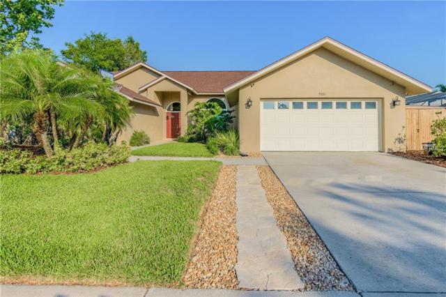 5526 Oakridge Drive, Palm Harbor, FL 34685 (MLS #U8001327) :: NewHomePrograms.com LLC