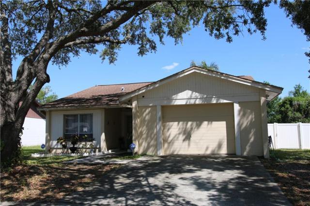 1603 Palm Leaf Drive, Brandon, FL 33510 (MLS #U8001343) :: Team Bohannon Keller Williams, Tampa Properties