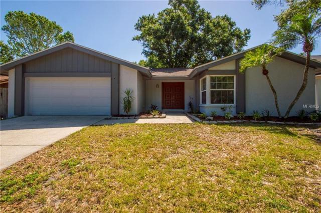 3921 Orchard Hill Circle, Palm Harbor, FL 34684 (MLS #U8001351) :: Delgado Home Team at Keller Williams
