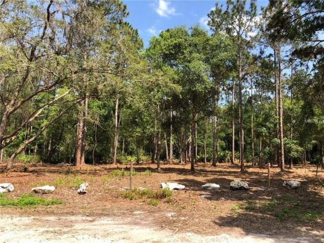 Coloma Lane, Odessa, FL 33556 (MLS #U8001360) :: Team Virgadamo