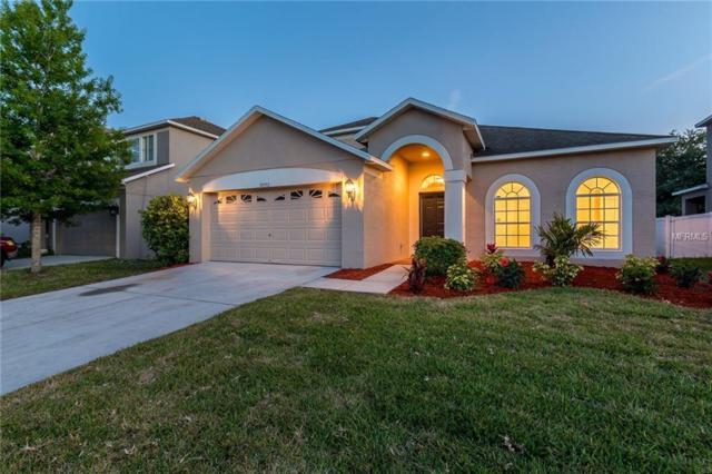 30552 Latourette Drive, Wesley Chapel, FL 33545 (MLS #U8001388) :: Delgado Home Team at Keller Williams