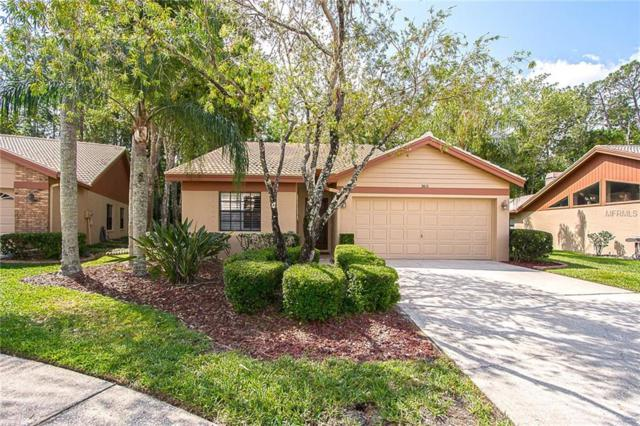 3612 Darston Street, Palm Harbor, FL 34685 (MLS #U8001440) :: NewHomePrograms.com LLC