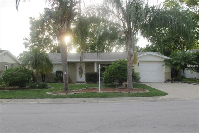 7843 Raintree Drive, New Port Richey, FL 34653 (MLS #U8001503) :: NewHomePrograms.com LLC