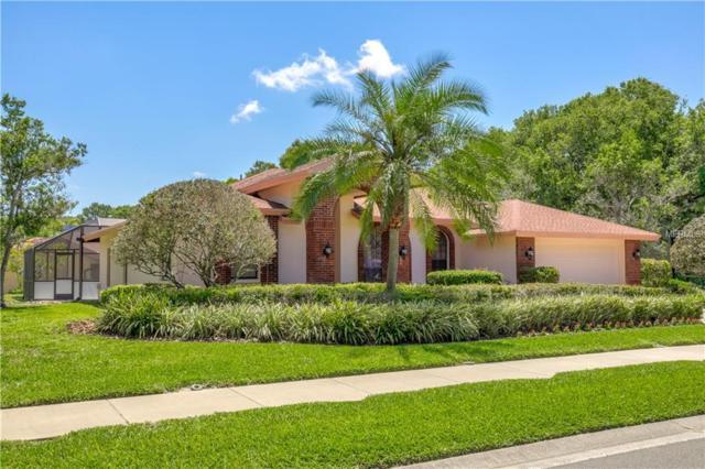 2885 Armadillo Drive, Palm Harbor, FL 34683 (MLS #U8001575) :: Team Virgadamo