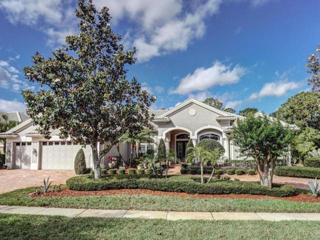 5420 Mira Vista Drive, Palm Harbor, FL 34685 (MLS #U8001682) :: Chenault Group