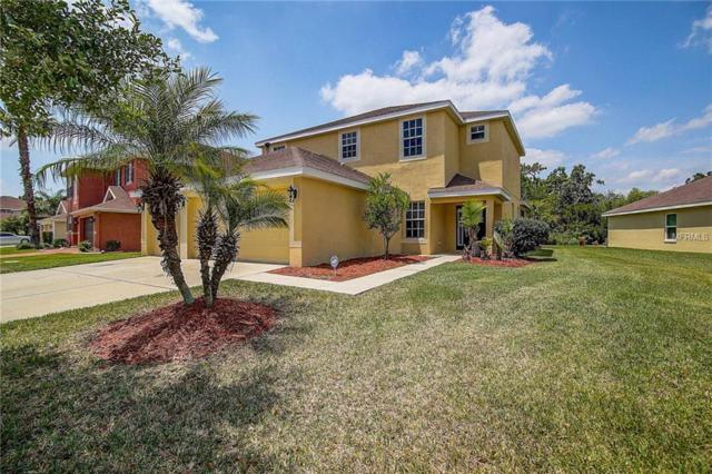 20516 Sultana Court, Tampa, FL 33647 (MLS #U8001696) :: Cartwright Realty
