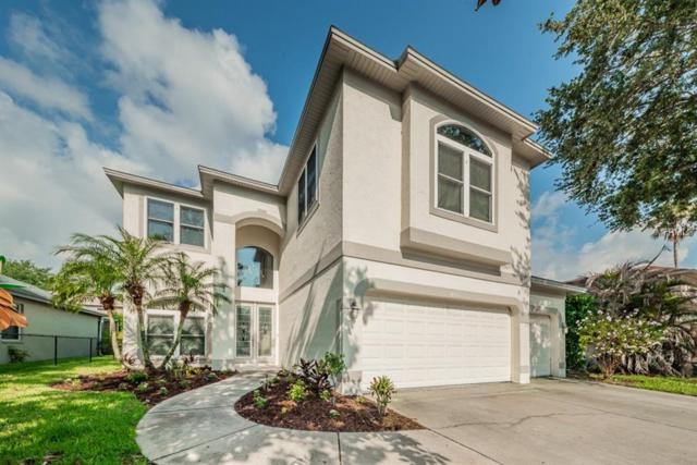 4103 Grandchamp Circle, Palm Harbor, FL 34685 (MLS #U8001722) :: Chenault Group