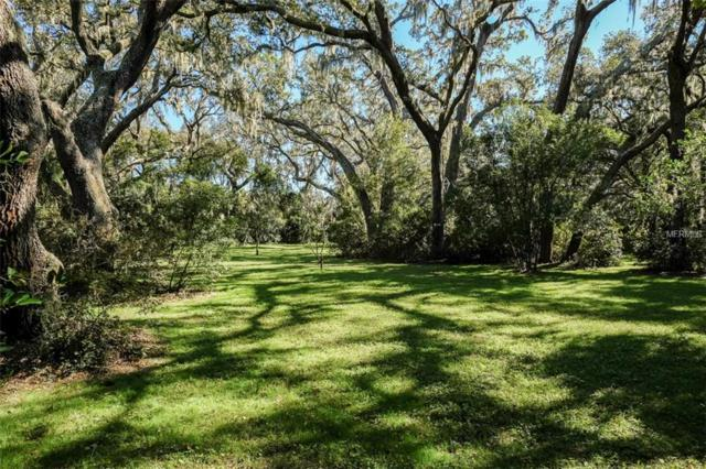 2680 East Lake Trail, Tarpon Springs, FL 34688 (MLS #U8001773) :: Chenault Group