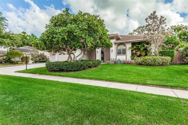 3313 Waterford Drive, Clearwater, FL 33761 (MLS #U8001801) :: Chenault Group