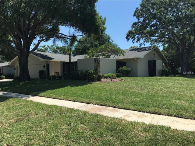 2663 Firestone Drive, Clearwater, FL 33761 (MLS #U8001811) :: Chenault Group