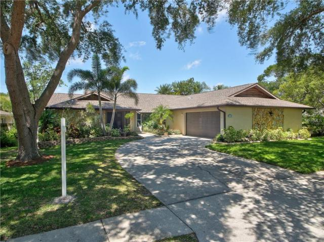 3460 Snowy Egret Court, Palm Harbor, FL 34683 (MLS #U8001847) :: Team Virgadamo