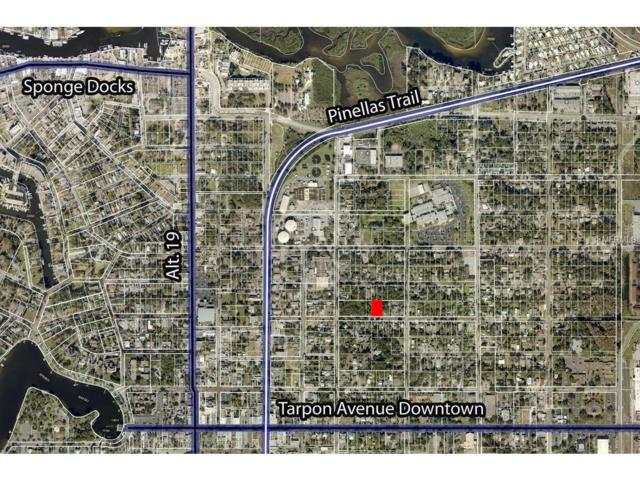 Cypress Street, Tarpon Springs, FL 34689 (MLS #U8001896) :: Chenault Group