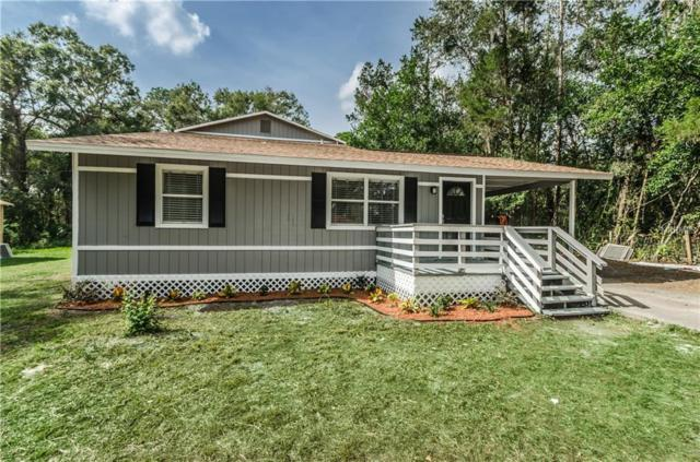 18812 Carr Drive, Lutz, FL 33559 (MLS #U8001911) :: Griffin Group