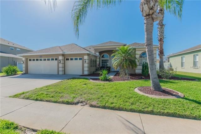 1523 African Violet Court, Trinity, FL 34655 (MLS #U8001966) :: Griffin Group