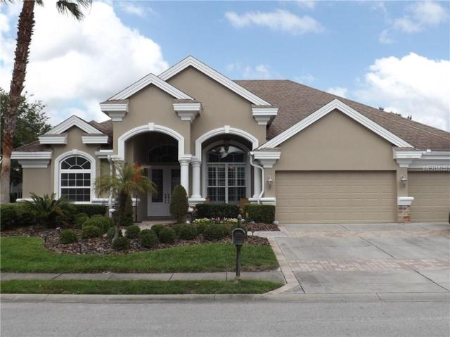 1434 Parilla Circle, Trinity, FL 34655 (MLS #U8002018) :: The Duncan Duo Team