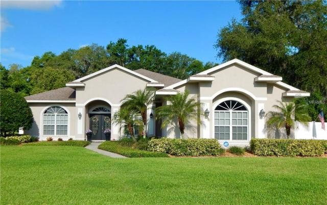 2625 Shipston Avenue, New Port Richey, FL 34655 (MLS #U8002769) :: The Duncan Duo Team