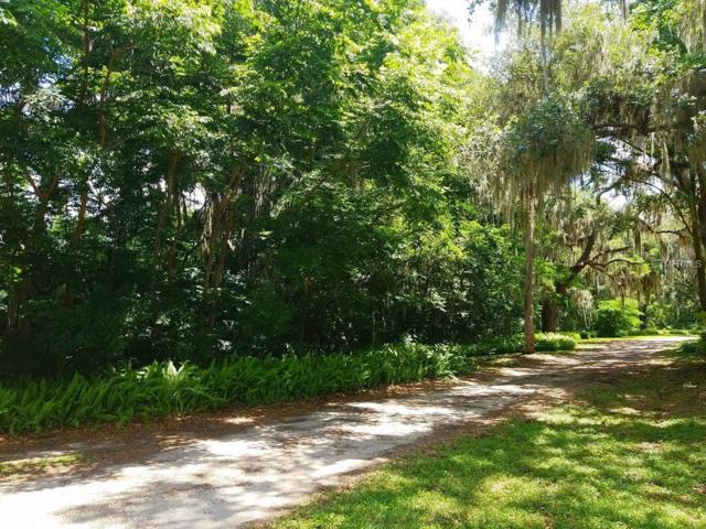 SE 155 Place, Weirsdale, FL 32195 (MLS #U8002848) :: The Duncan Duo Team