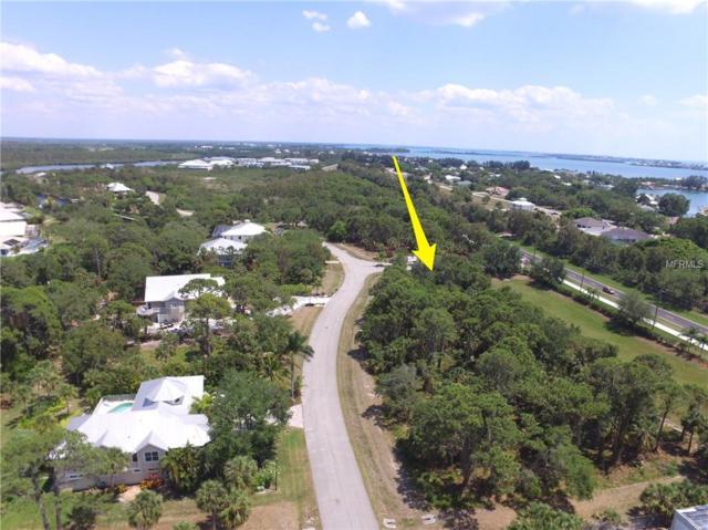 10095 Creekside Drive, Placida, FL 33946 (MLS #U8002927) :: The Duncan Duo Team