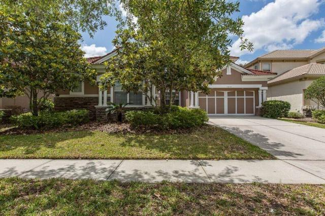 11632 Bristol Chase Drive, Tampa, FL 33626 (MLS #U8002957) :: O'Connor Homes