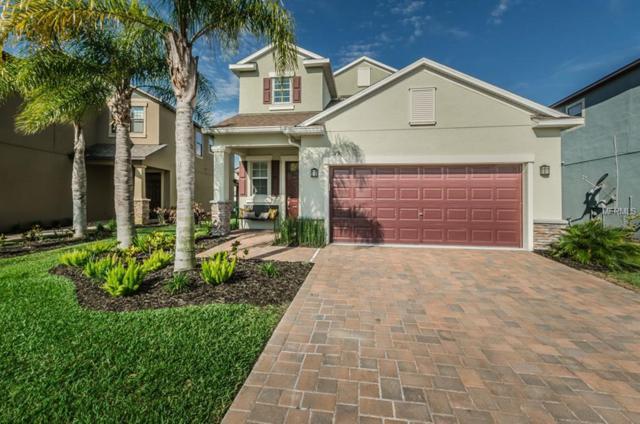 11790 Lake Boulevard, New Port Richey, FL 34655 (MLS #U8003010) :: Lock and Key Team
