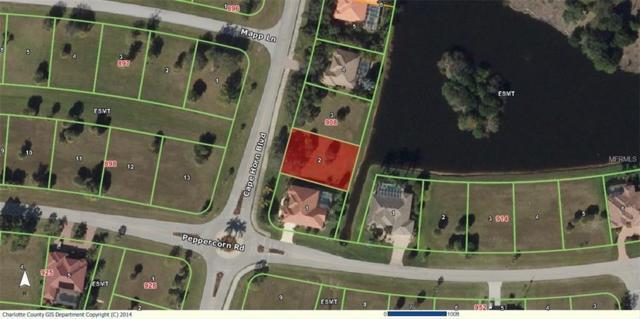 17204 Cape Horn Boulevard, Punta Gorda, FL 33955 (MLS #U8003251) :: Medway Realty