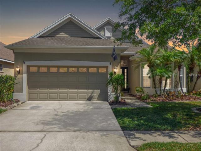 9510 Greenpointe Drive, Tampa, FL 33626 (MLS #U8003599) :: The Duncan Duo Team