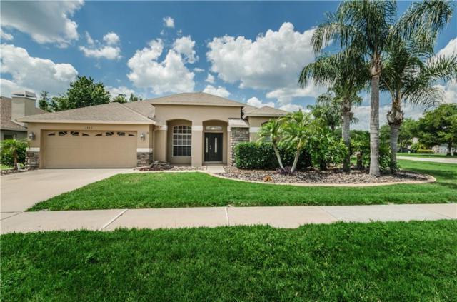 1519 Flatwood Court, Trinity, FL 34655 (MLS #U8003776) :: Delgado Home Team at Keller Williams