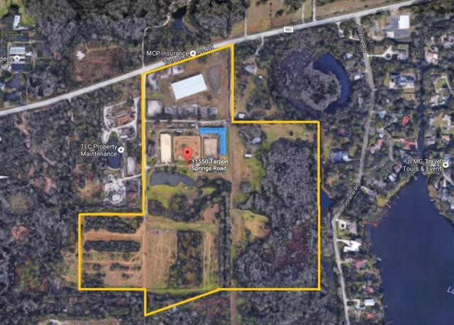 11550 Tarpon Springs Road, Odessa, FL 33556 (MLS #U8003998) :: RE/MAX Realtec Group