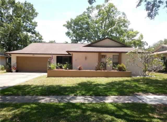 2851 Thistle Court N, Palm Harbor, FL 34684 (MLS #U8004022) :: The Duncan Duo Team