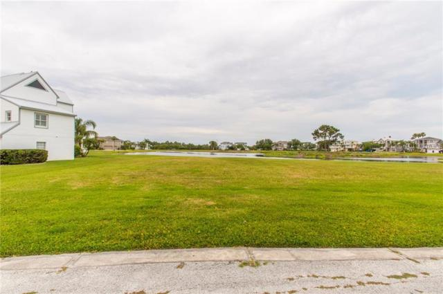Sandpiper Pointe Court, Tarpon Springs, FL 34689 (MLS #U8004140) :: Mark and Joni Coulter | Better Homes and Gardens